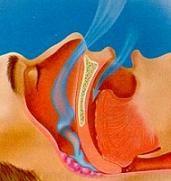 Frecuencia respiratoria definicion medica