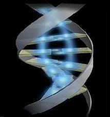 Resultado de imagen para genetica