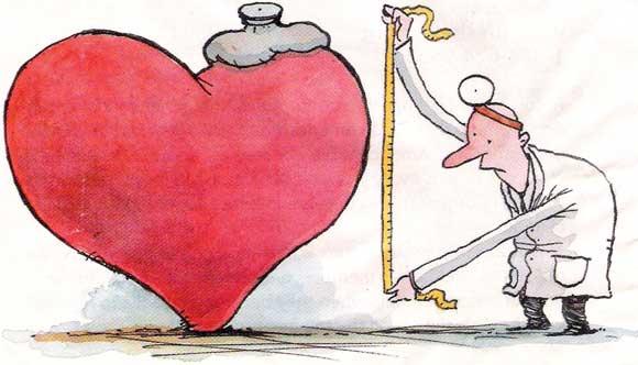 Definicin de arteria  Qu es Significado y Concepto