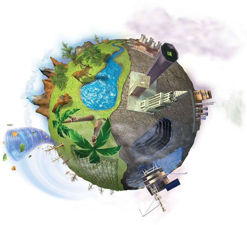 definición de ciencias biológicas qué es, significado y conceptoBiologicas #2