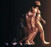 """Resultado de imagen de """"ser humano"""""""