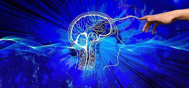 Comunicación cerebral