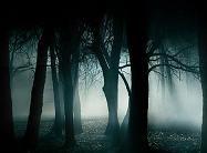 Oscuridad