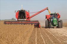 Tecnología agropecuaria