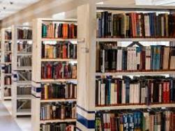 Bibliotecología