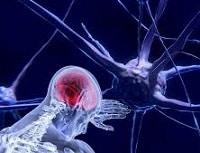 Neurociencia