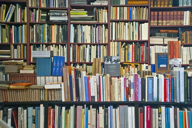 Cibergrafía libros