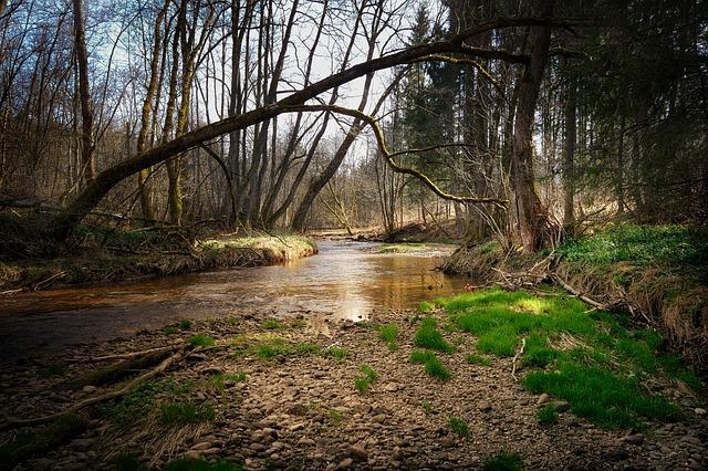 Grava río