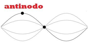 Antinodo