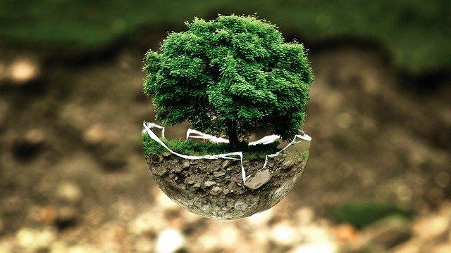 Imbuir cuidado del medio ambiente