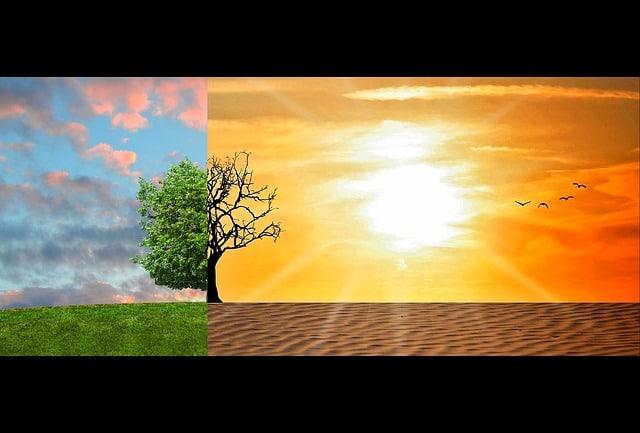 Modelizar cambio climático