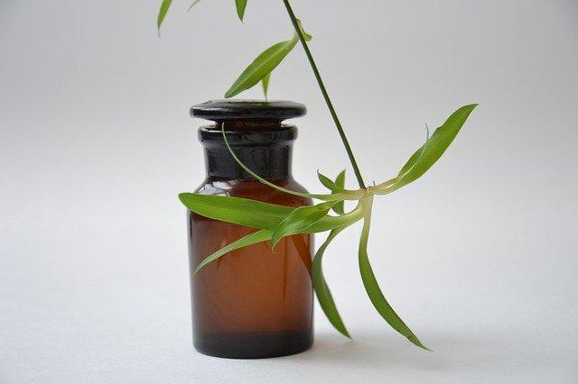 Terapia con plantas